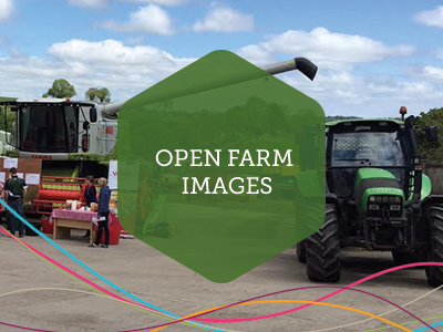 Open Farm Weekend Images
