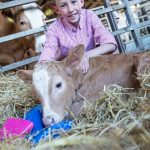 OPEN FARM WEEKEND 2016